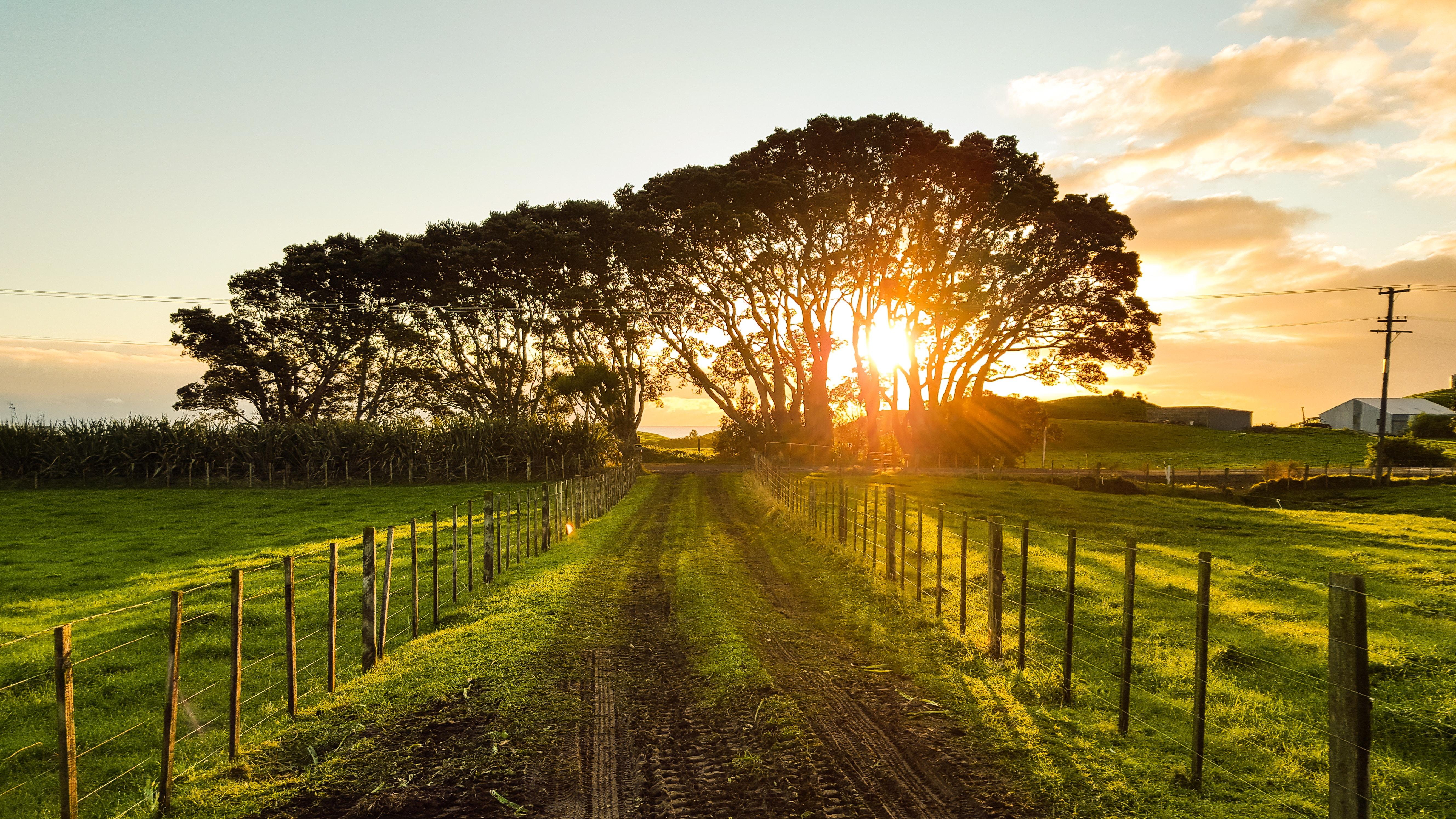 Don's Story – The Good Farmer